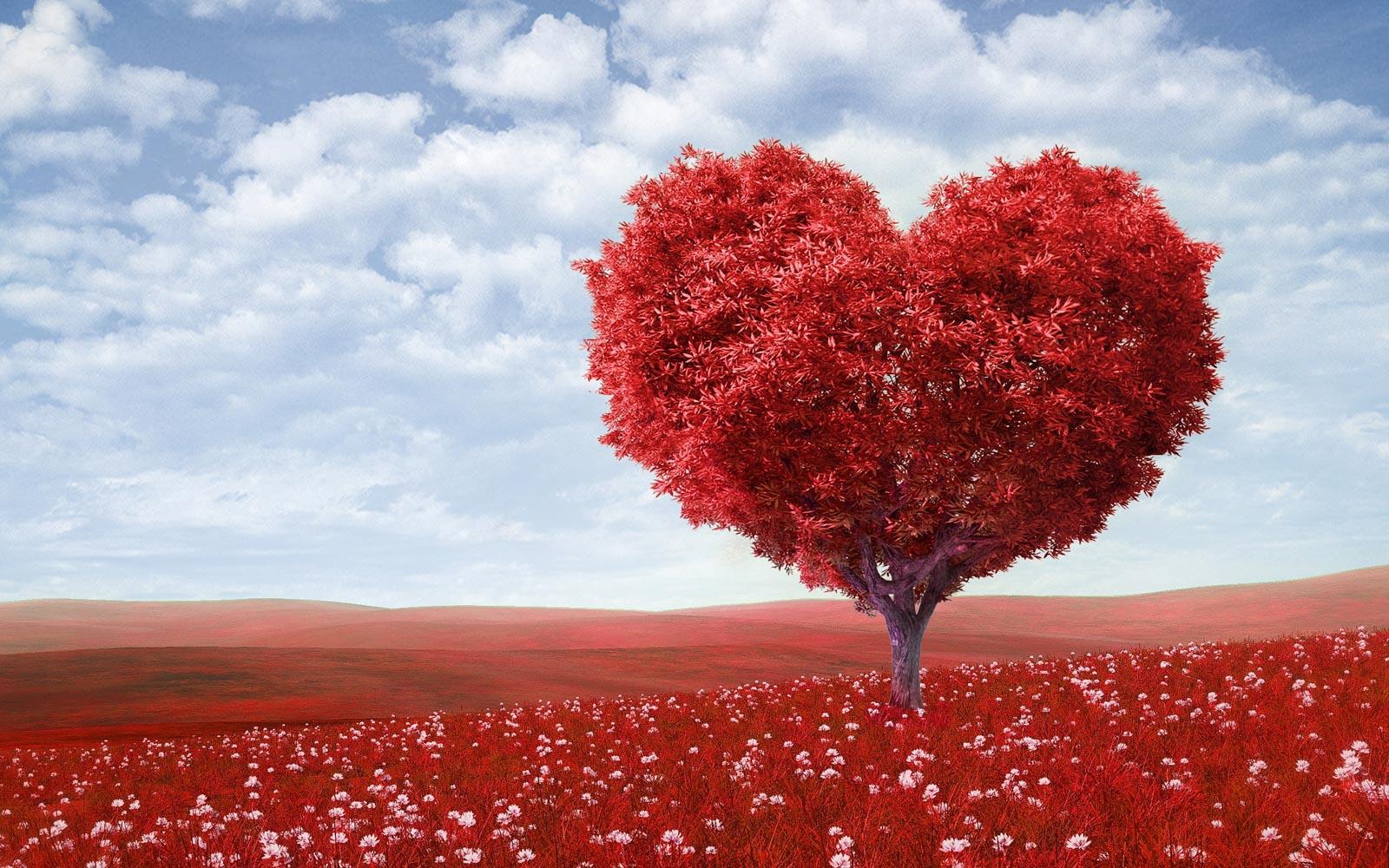 DEVINUS Kracht van het hart weekend. Dit weekend staat de onvoorwaardelijke liefde voor jezelf centraal in verbinding met je Hart. In jouw Hart ligt je innerlijke leiding verankert.