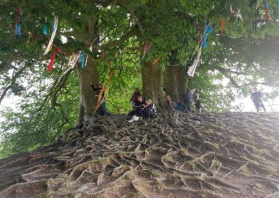 07 DEVINUS spirituele reis Glastonbury