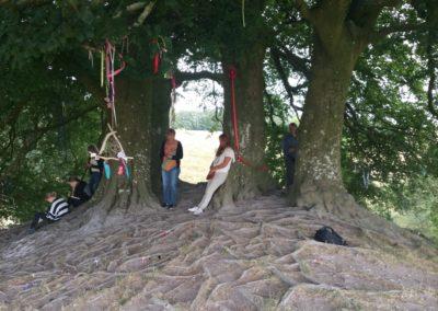 24 DEVINUS spirituele reis Glastonbury
