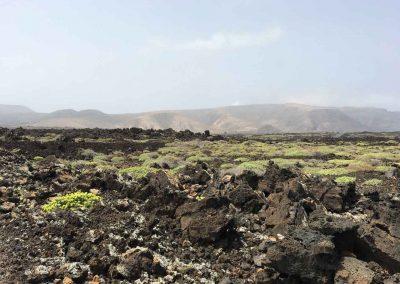 Landschap-Lanzarote-spirituele-reisvakanties-DEVINUS