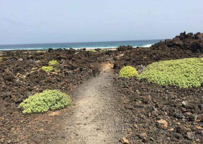 Strand-Lanzarote-spirituele-reisvakanties
