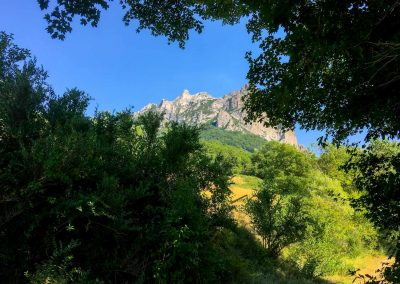 10 DEVINUS Zuid Frankrijk Spirituele reisvakanties 8947