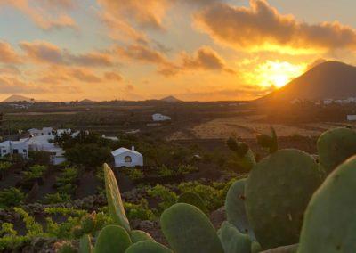 25 DEVINUS spirituele reis Lanzarote Amatista