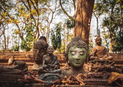 DEVINUS spirituelereis Thailand wat-4128675_1920